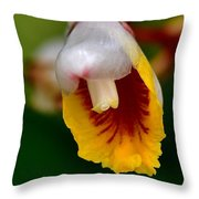 Tropical Bloom 8 Throw Pillow