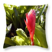 Tropical Bloom Throw Pillow