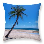 Tropical Blue Skies And White Sand Beaches Throw Pillow