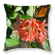 Tropical Butterfly On Flower Throw Pillow