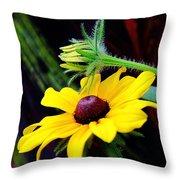 Tropical Canna Susan Throw Pillow