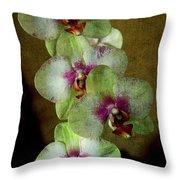 Tropical Dreams 2 Throw Pillow