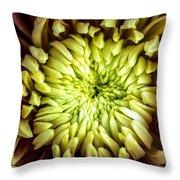 Tropical Flower 13 Throw Pillow
