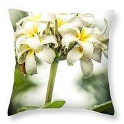Tropical Flower 7 Throw Pillow
