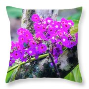 Tropical Flowers Of Costa Rica Throw Pillow