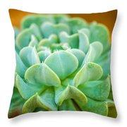 Tropical Garden 12 Throw Pillow