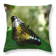 Tropical Garden Beauty Throw Pillow