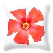 Tropical Hibiscus Flower Vector Throw Pillow