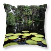 Tropical Hopscotch Throw Pillow