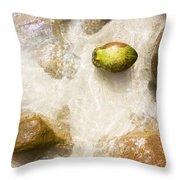 Tropical Island Coconut Throw Pillow