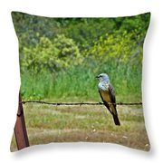 Tropical Kingbird Throw Pillow