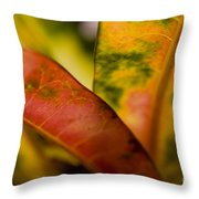 Tropical Leaf Abstract Throw Pillow