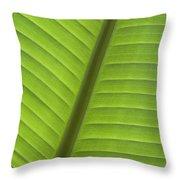 Tropical Leaf Detail Throw Pillow
