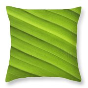 Tropical Leaf Patterns Throw Pillow