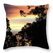 Tropical Lullaby Throw Pillow