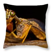 Tropical Mantispid Throw Pillow
