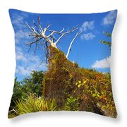 Tropical Plants In A Preserve In Florida Throw Pillow