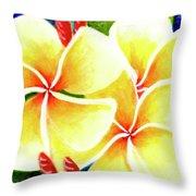 Tropical Plumeria Flowers #226 Throw Pillow