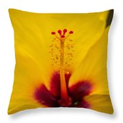 Tropical Reach Throw Pillow