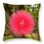 Tropical Red Puff Throw Pillow
