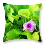 Tropical Rosewood In Hiding Throw Pillow