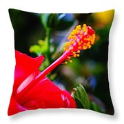Tropical Splendor Throw Pillow