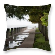 Tropical Storm Hermine Throw Pillow