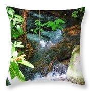 Tropical Stream Throw Pillow