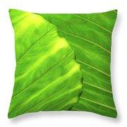 Tropical Vibrant Green Throw Pillow