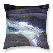 Tropical Water Bird Josephine Falls Throw Pillow