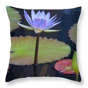 Tropical Water Colors Throw Pillow