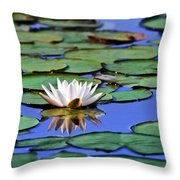 Tropical Water Lily Throw Pillow