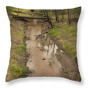 Trout Brook Scene 1 B Throw Pillow