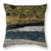 Trout Creek Throw Pillow