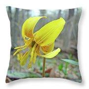 Trout Lily - Erythronium Americanum  Throw Pillow