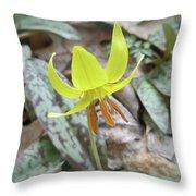 Trout Lily Wildflower - Erythronium Americanum Throw Pillow