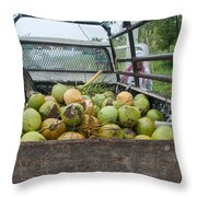 Truckload Of Coconuts Throw Pillow
