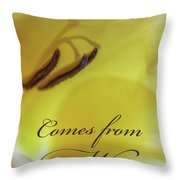 True Beauty Comes From Within Throw Pillow