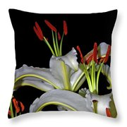 True Lilies Throw Pillow