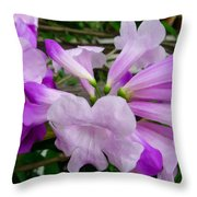 Trumpet Flower 11 Throw Pillow