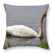 Trumpeter Throw Pillow