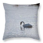 Trumpeter Swan Yellowstone Throw Pillow