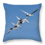 Trumpeter Swans Flying Throw Pillow