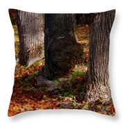 Trunk And Leaves Throw Pillow by Joyce Kimble Smith