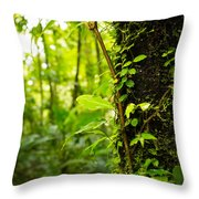 Trunk Of The Jungle Throw Pillow