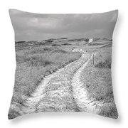Truro Dune Trail Throw Pillow