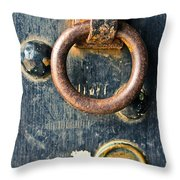 Trusted Gateway Throw Pillow