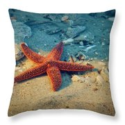 Try Not To Star-e Throw Pillow