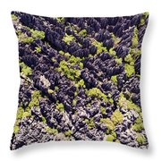 Tsingys, Karst Formations In The Tsingy Throw Pillow