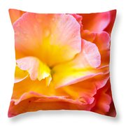 Tuberous Begonia  Throw Pillow